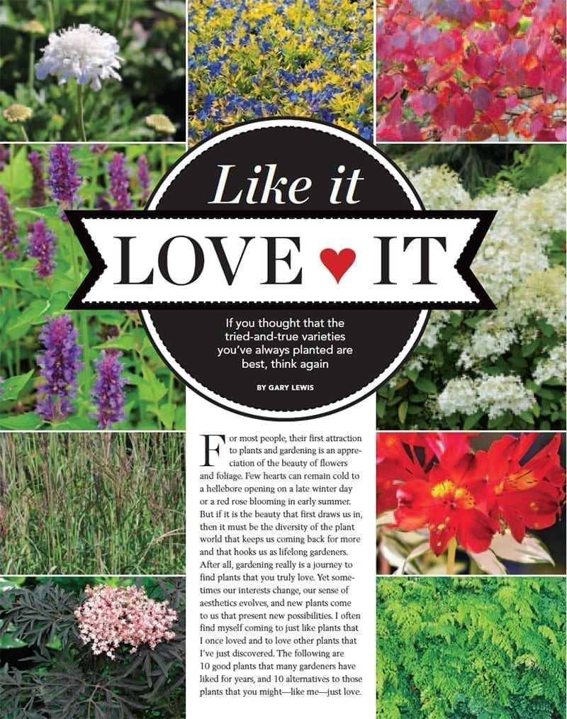 Like It, Love It, by Gary Lewis, Fine Gardening Magazine
